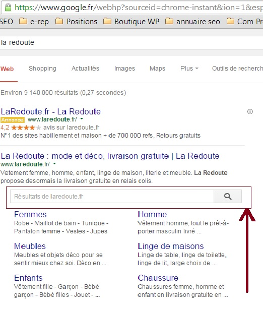 exemple google search box